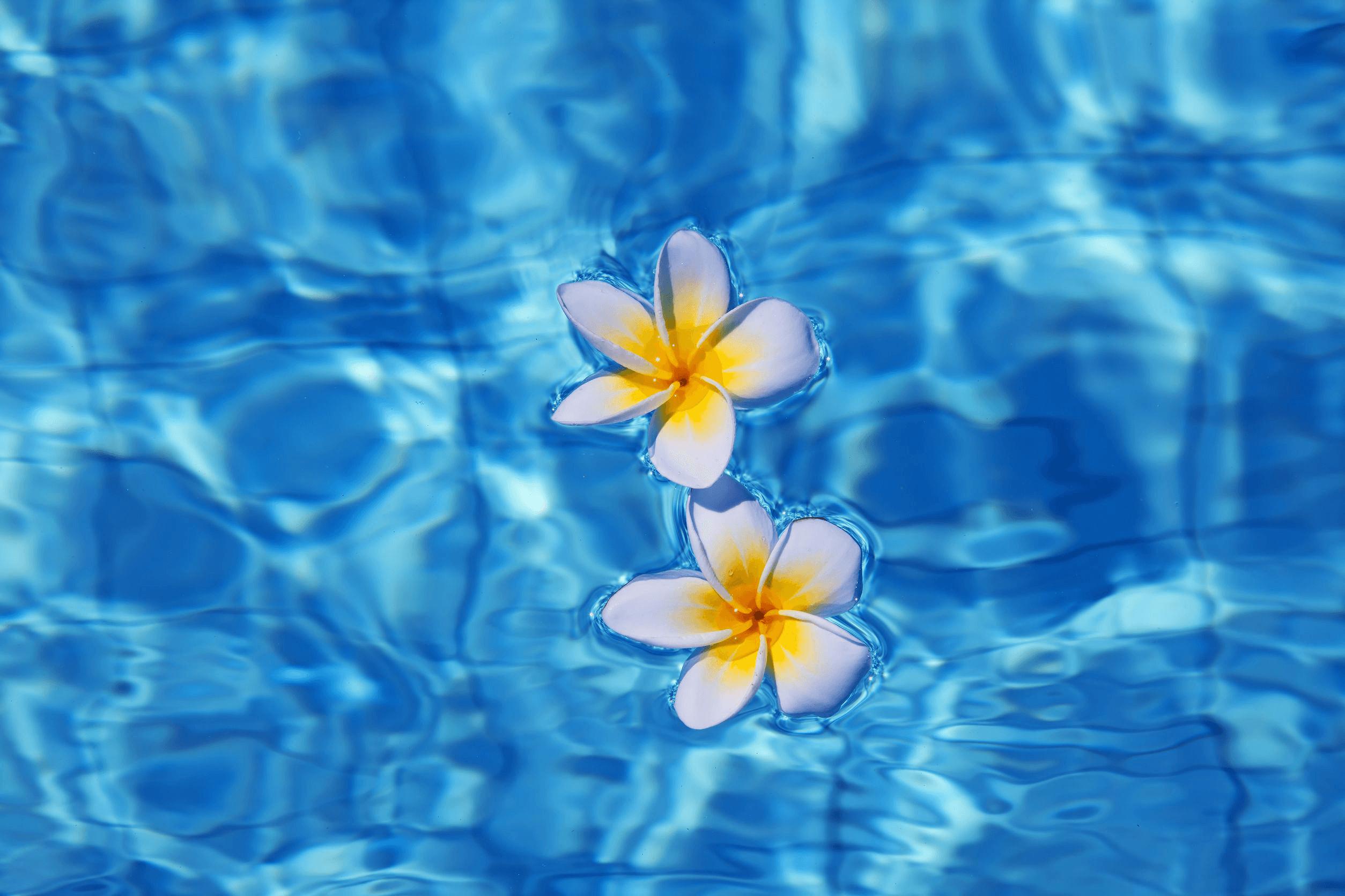 Adjusting pool water hardness
