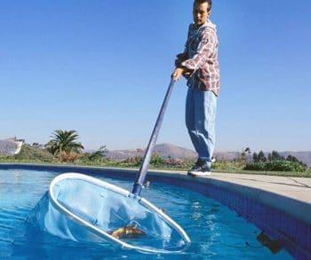 pool-skimming