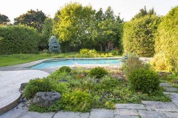 pool landscaping garden