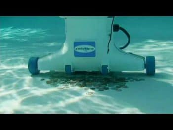 hammerhead vacuum cleaning pool